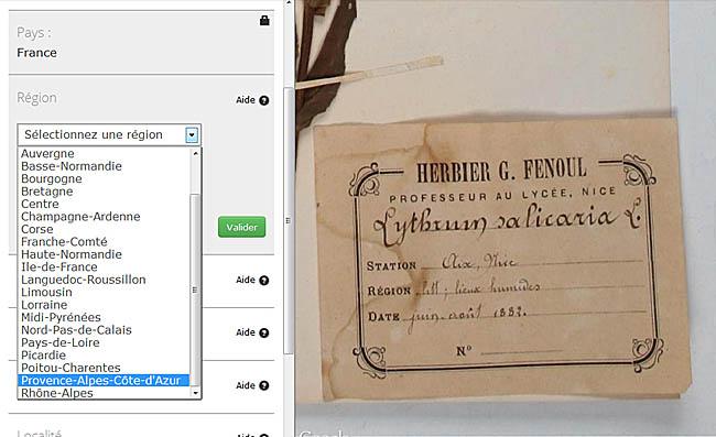 Exceptionnel Numériser et promouvoir les collections d'histoire naturelle  NO61