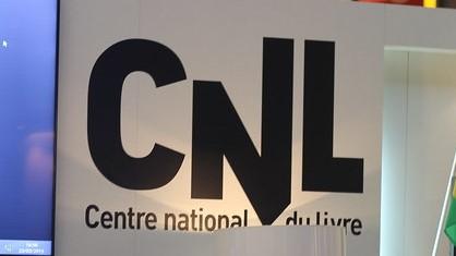 Logo CNl - Flikr